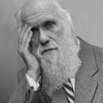 Darwin Award –Preisverleihung an die Besten…Nicht!