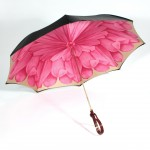 Umbrella-C3